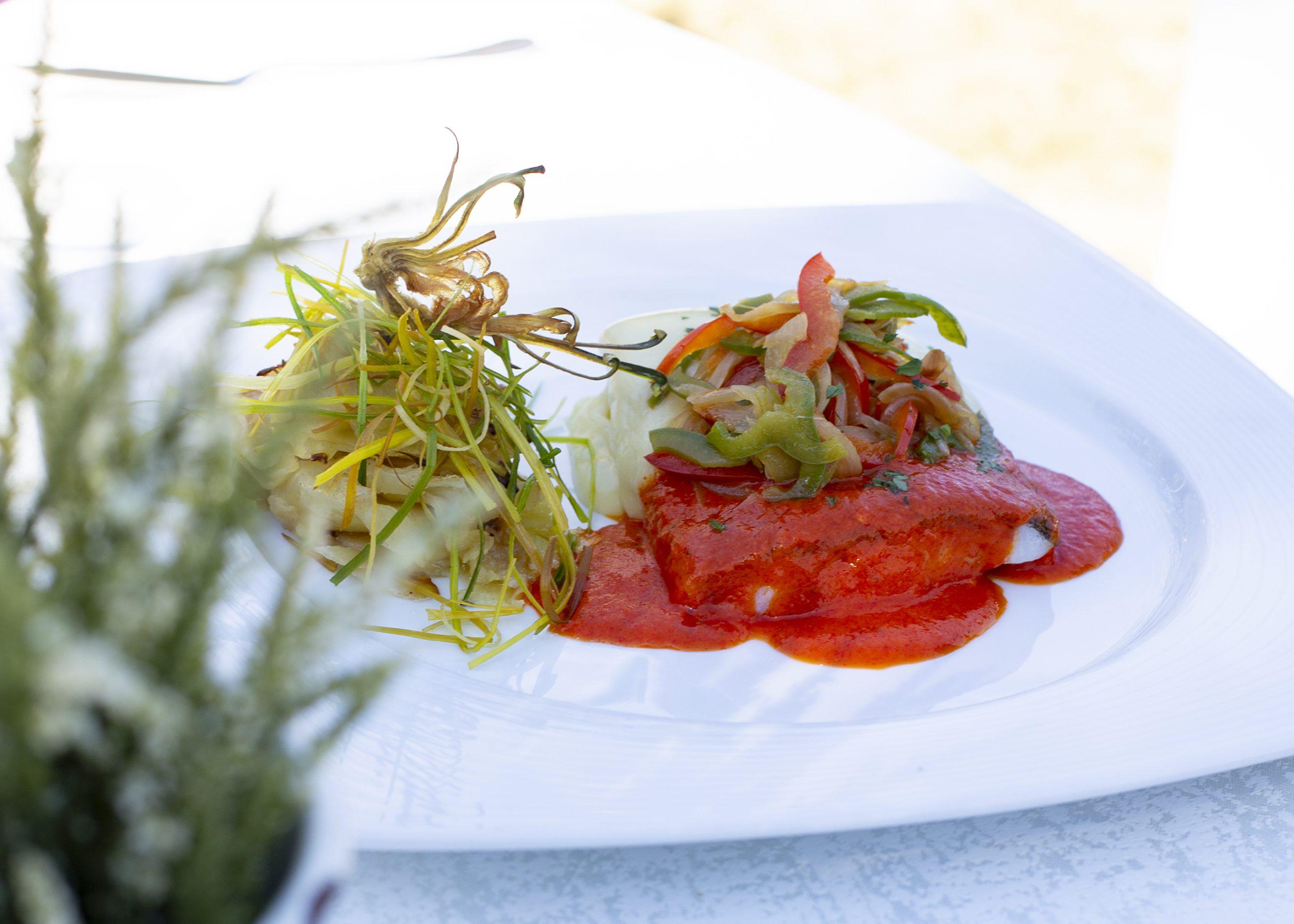 ejemplo presentacion de plato